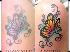Butterfly Before After